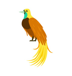 tropical bird with long feathers colorful vector image vector image
