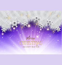 christmas background with snowflakes and stars vector image vector image