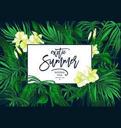 summer leaves vintage exotic greeting card vector image