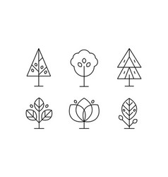 collection trees in linear style decorative vector image