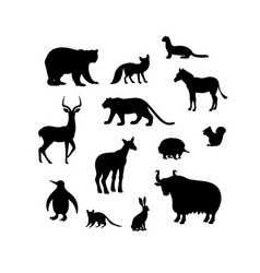 Set animal silhouettes bear fox weasel vector