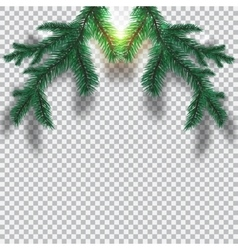 Two green blue realistic tree branch and its vector