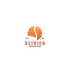 Animal bird ostrich with sunset silhouette logo vector
