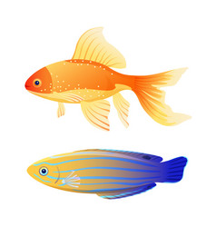Blue striped tamarine and goldfish cartoon poster vector