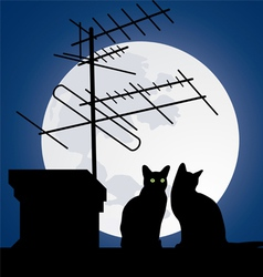 cats on the roofs vector image
