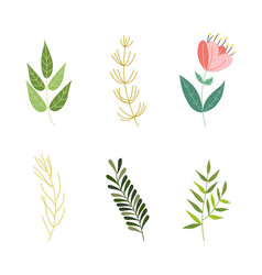 flat abstract green plant icon vector image