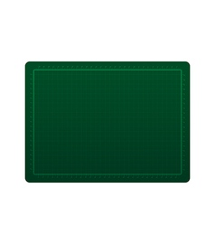 Green cutting rubber isolated on the white vector