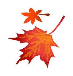 icon fallen leaves vector image