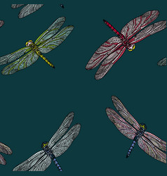 Seamless pattern with dragonfly vector