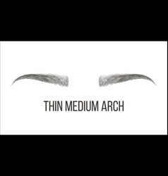Thin medium arch brows shape business card vector