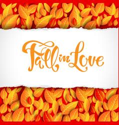 beautiful fall leaves card vector image