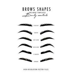 Brow bar poster microblading eyebrows shapes vector