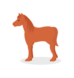 brown horse farm animal on a vector image