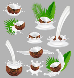coconut with milk splash realistic vector image