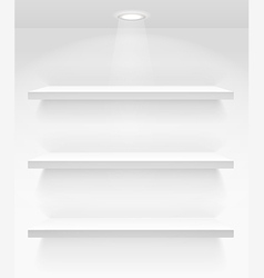 Empty book shelves on the wall vector