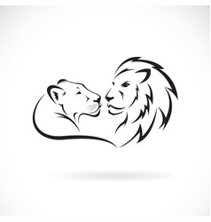 male lion and female lion design on white vector image