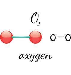 O2 oxygen molecule vector