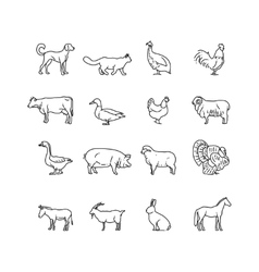 Farm animals thin line icons set Outline vector image vector image