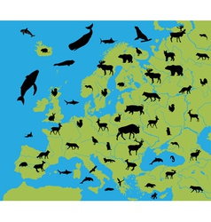 Animals on the map of Europe vector image
