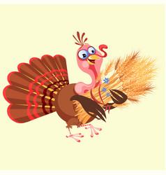 Cartoon thanksgiving turkey character holding vector
