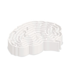 complicated gray labyrinth in brain shape in vector image