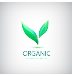 eco logo organic product shop icon vector image