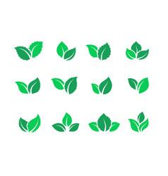 flat leaves set vegan green food logos farm vector image