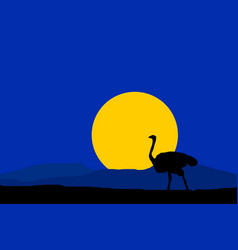 Night nature with black silhouette ostrich vector