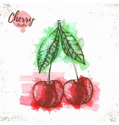 Watercolor cherry sketch vector