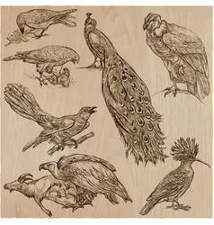 birds - an hand drawn pack line art vector image