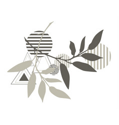 abstract shapes with plants vector image