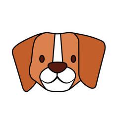 beagle dog pet on white background vector image