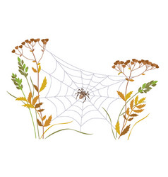 Big spider on web between two plant stems vector