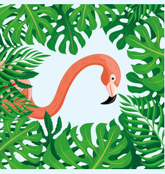 pink flamingo and tropical leaves vector image