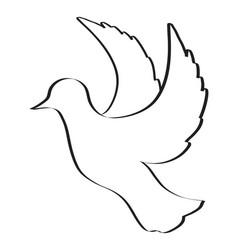 sketch of pigeon bird flying hand drawn vector image