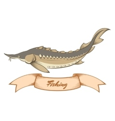 sturgeon fishing banner vector image