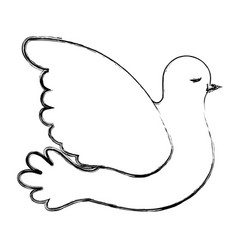pigeon peace side view on blurred silhouette vector image vector image