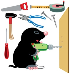 cartoon mole builder vector image