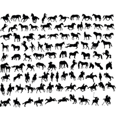100 horses vector image