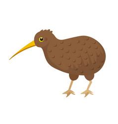Brown small kiwi bird with long beak on white vector