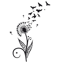 Dandelion with birds vector