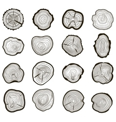 Tree rings set saw cut trunk vector