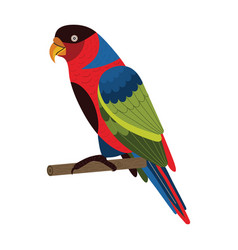 Western black capped lory parrot in flat vector