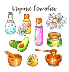 organic cosmetics beauty set hand vector image