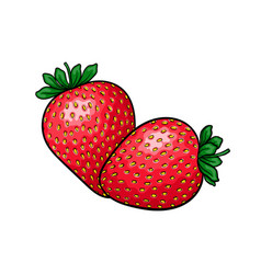 beautiful cartoon red strawberry with black vector image