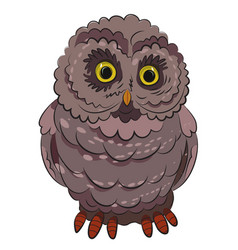 Cartoon image of owl vector