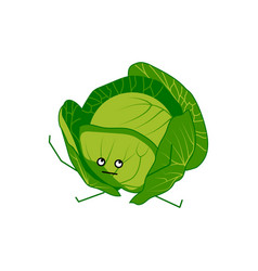 Cute cabbage cartoon character vector
