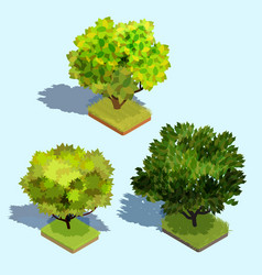 set of 3d isometric trees with shadow and a vector image
