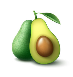 Whole and half cut avocado vector