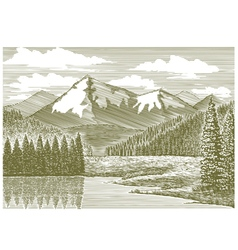 Woodcut Mountain River vector image